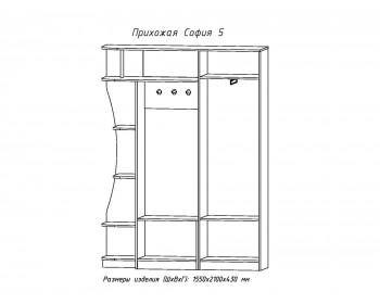 Распашной шкаф Прихожая София-5