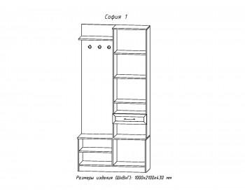 Распашной шкаф Прихожая София-1